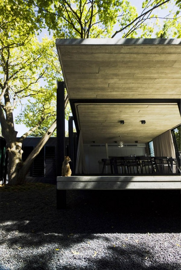 Elm-and-Willow-House-by-Architects-EAT-22