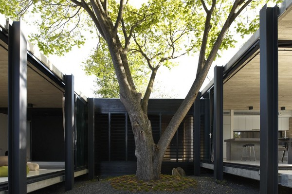 Elm-and-Willow-House-by-Architects-EAT-5