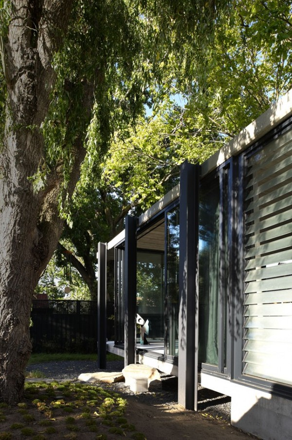 Elm-and-Willow-House-by-Architects-EAT-8