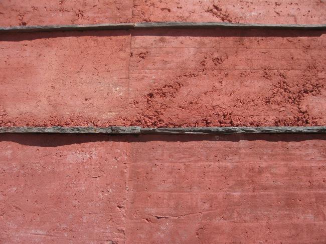 04807-CIBA-016 (Photo José Laranjeira)