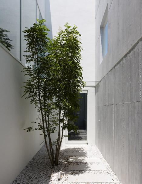 dezeen_Takanawa-House-by-Hiroyuki-Ito_3